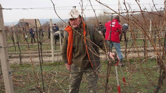 Tretie miesto len vinou horšieho času obsadil vinár Ivan Holík z Kopaníc. Foto: Michal Rebro