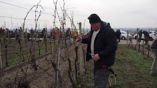 Vicestarosta a jeden z najväčších producentov vína v Rači Miloš Máťuš nechýbal medzi súťažiacimi. Foto: Michal Rebro