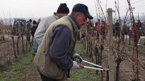 Ďalší zo známych račianskych vinárov a vinohradníkov Dušan Žitný. Foto: Michal Rebro