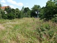 Horná časť záhrady je ukrytá pred mnohými pohľadmi, pritom ide o riadny kus pozemňku.
