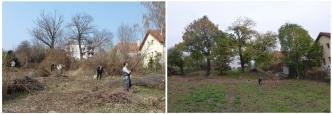 Práce, ktoré sa v záhrade vykonali od apríla 2011, vidno na prvý pohľad!