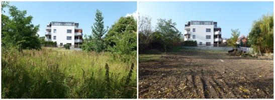 Pohľad na hornú časť záhrady: August 2013 - október 2013.
