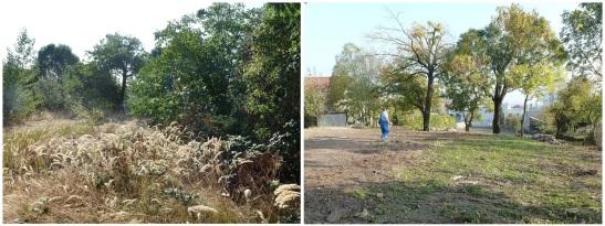 Pred a po dobrovoľníckej brigáde v septembri 2013.