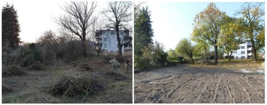 Celkový pohľad zdola na hornú časť Obecnej záhrady. Apríl 2011 - október 2013.
