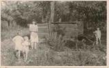 Pozrite si historické zábery Obecnej záhrady, v rodinnom albume ich objavil poslanecHrdlička