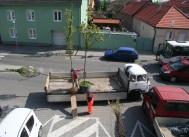 Stromy z Plantaga, ktoré objednal do Obecnej záhrady Račiansky spolok, priviezli dodávkou.