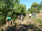 Jedna z prvých brigád v Obecnej záhrade v Rači sa konala v septembri 2013.