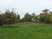 Po vyčistení priestoru sa ukázalo nevyhnutné vymeniť plot, uvažovať o závlahe a novej výsadbe.