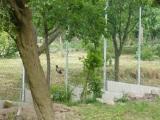 Začali sa práce v hornej časti Obecnej záhrady, prvý bol na rade starý hrdzavýplot