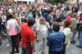 Návštevníci Festivalu frankovky modrej a bratislavského vína 2015 a Korunovačných slávností.