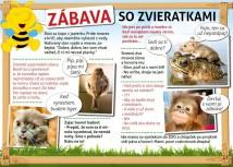 Brozurka-36-37-940x676