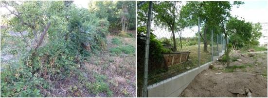 Obecna-zahrada-2015-1