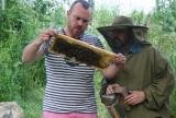 Včely v Obecnej záhrade vyprodukovali prvý med preRačanov